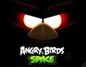 ระวัง Angry Birds Space ของปลอม