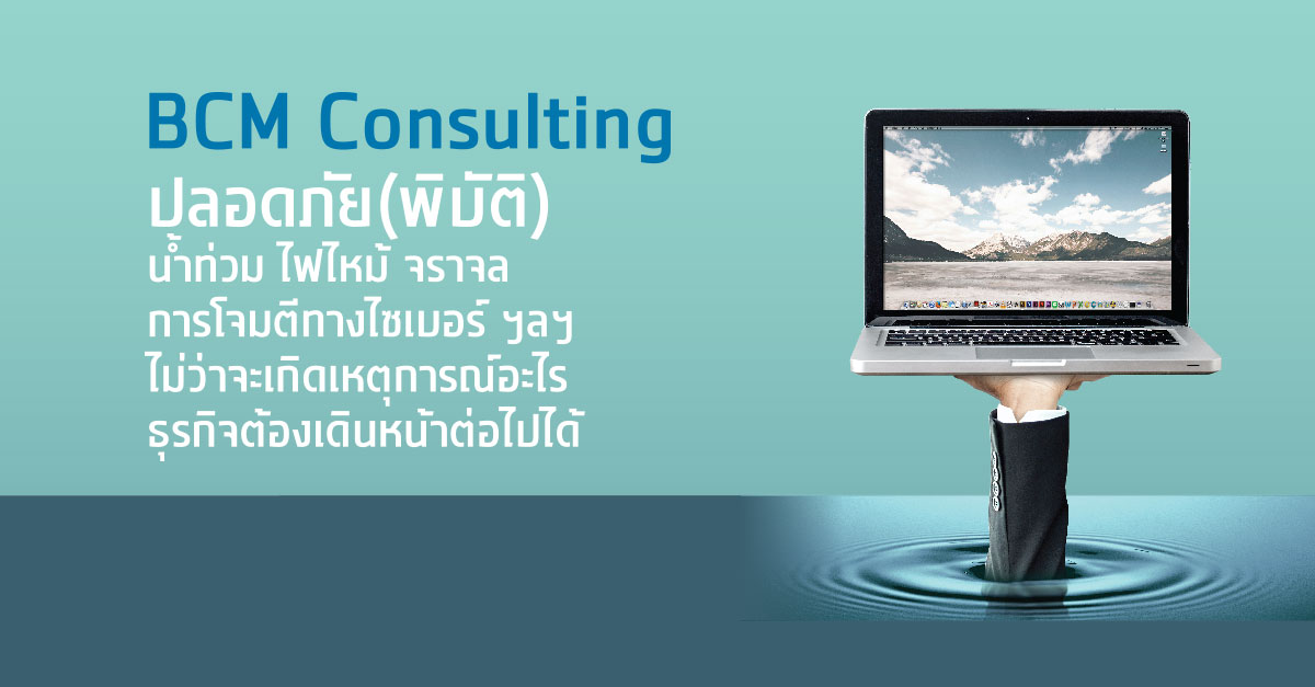 BCM Consulting