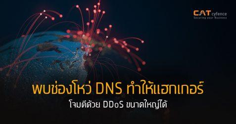 พบช่องโหว่ DNS ทำให้แฮกเกอร์โจมตีด้วย DDoS ขนาดใหญ่ได้