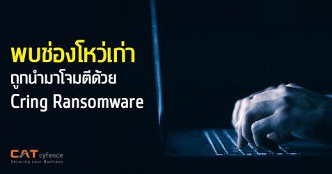 พบช่องโหว่เก่าถูกนำมาโจมตีด้วย Cring Ransomware